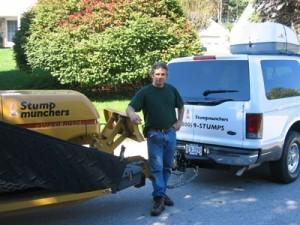 Daniel Murphy stump removal