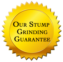 Graphics_Page-Guarantee