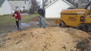 stump new grinder clients raking out ships