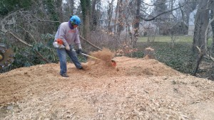 stump new grinder daniel using power broom to pull chips away from creek