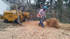 stump new grnder Daniel with power broom